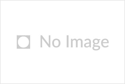 竹内製菓株式会社【公式】インスタグラム なりすまし(偽)アカウントについて